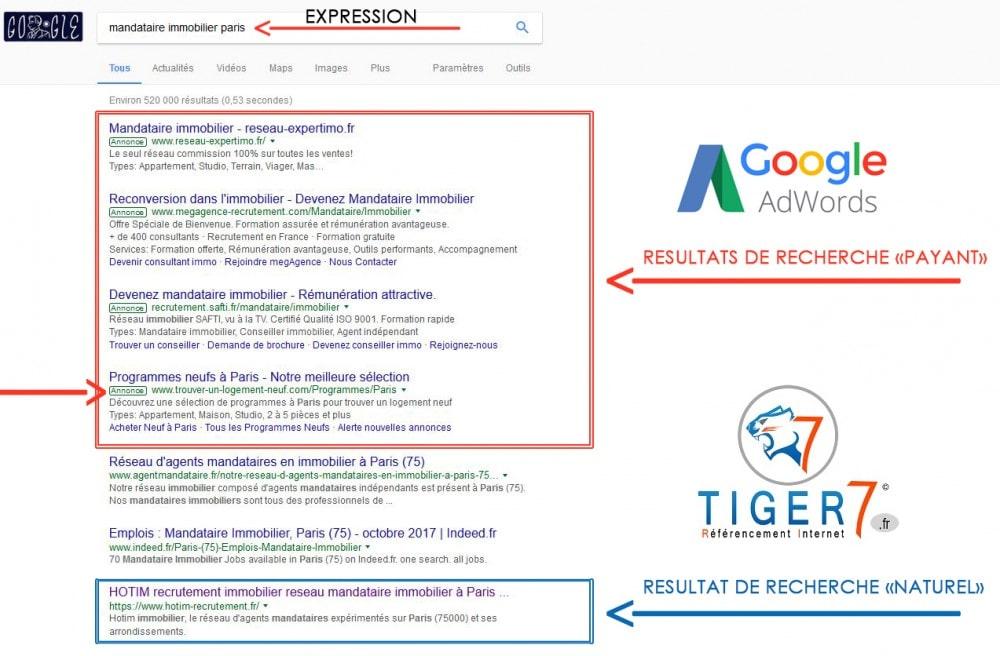 Google AdWords régie publicitaire / affichage dans le moteur de recherche